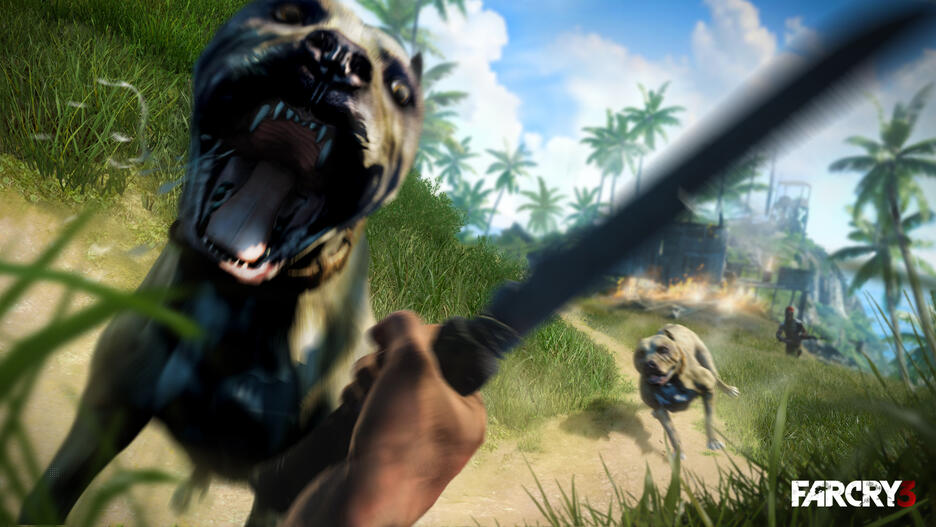 Far Cry 3 Classic Edition Gamestop Ireland
